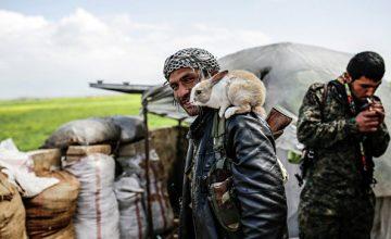 США шантажируют Турцию, вооружая сирийских курдов, считает политолог