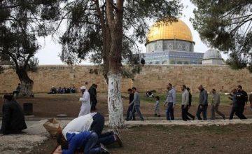 АНАЛИЗ: Могут ли Турция и Россия осуществить сотрудничество по Иерусалиму?