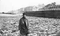 RUSEN[KÜLTÜR]: Arşiv Fotoğraflarında St. Petersburg'un Yaşadığı Seller
