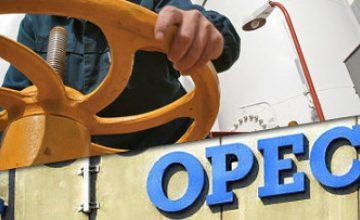 Rusya'nın OPEC ile ortaklık kurma planı yok