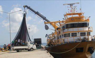 Türkiye'den Rusya'ya balık ihracatı yüzde 40 arttı