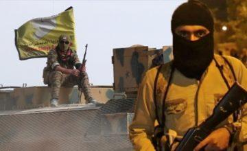 Bağdadi ne kadar teröristse PYD/PKK elebaşıları o kadar terörist